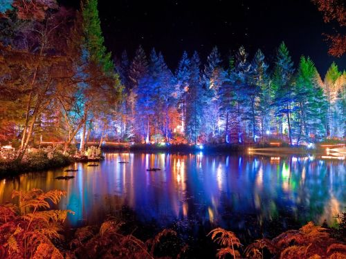 Pitlochry S Enchanted Forest